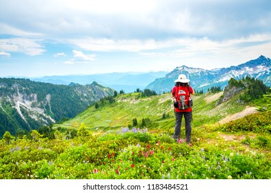 Mount Rainier National Park, Washington State - June 27, 2015: Woman Hiker Taking Photo and Enjoying the View of Mount Rainier Near to Mazama Ridge, USA