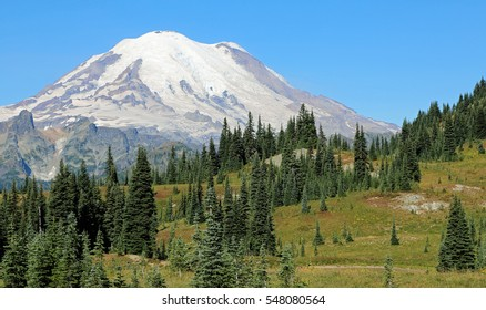 Mount Rainier - Mount Rainier National Park, Washington