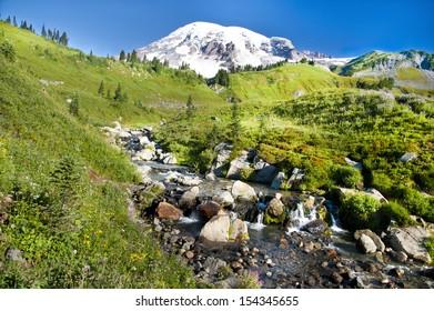 Mount Rainier at Paradise in Mt. Rainier National Park, WA, USA