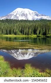 Mount Rainier reflection, Mt. Rainier National Park, WA, USA