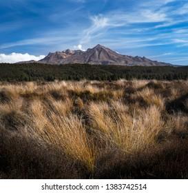 Mount Ruapehu New Zealand Summer