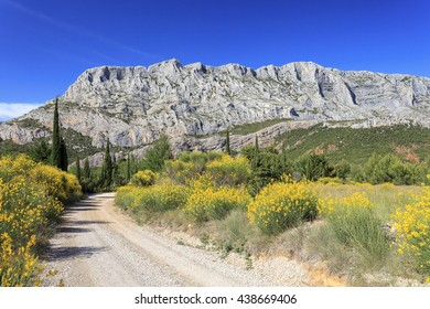 Mount Sainte Victoire and Flowers