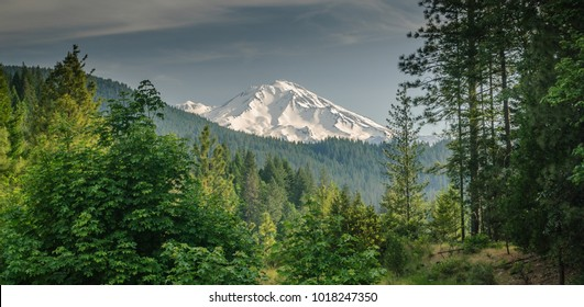 Mount Shasta viewed from a vista point by highway 5