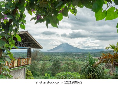 Mount Sinabung, view from Gundaling Hill, Berastagi, North Sumatera, Indonesia.  Frame of tree branches with green leaves.
