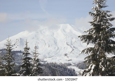 Mount St. Helens viewed from forest road 8312 on Mount Marble, Washington State, USA