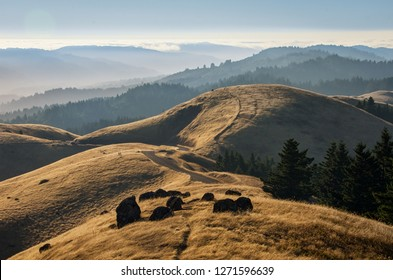 Mount Tamalpais - California