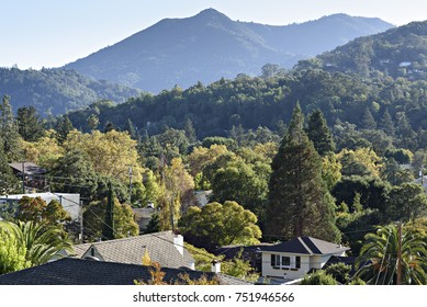 Mount Tamalpais Towers Above the Rooftops of San Anselmo