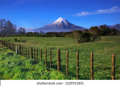Mount Taranaki with snow capped under the blue sky with grass field as a foreground in the Egmont National Park, the most symmetrical volcanic cones, Tranaki, New Zealand
