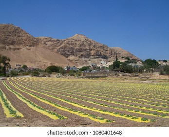 Mount Of Temptation - Jericho Palestine West Bank