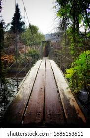 Mount Usher Gardens Avoca Gardens Wicklow Ireland