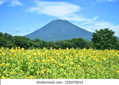 It is Mount Yotei in Niseko, Hokkaido