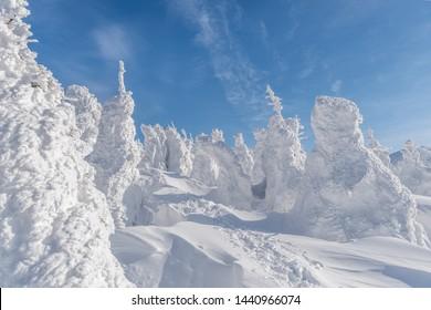 Mount Zao Snow Monster - Yamagata, Japan
