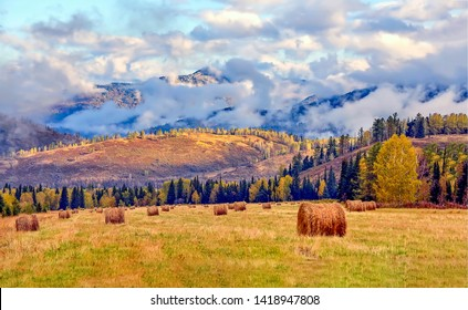 Mountain agriculture field haystack landscape. Haystask rolls on agriculture field. Agriculture field haystack rolls in autumn season