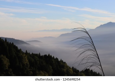 Mountain Ali , Taiwan - October 17 2017: Sea fog off the coast at dawn, and mountain ranges wreathed in mist.