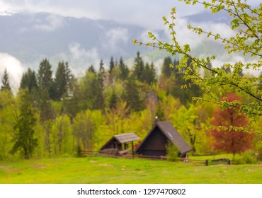 Mountain alps landscape with house and trees in fog clouds in Slovenia at spring
