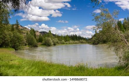 Mountain Altai. Chuya River in the summer.