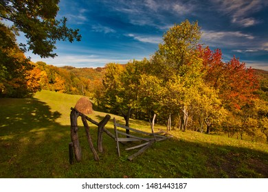 The mountain autumn landscape with colorful forest. Carpatian mountains, transilvania.