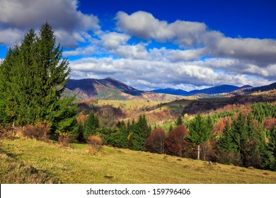 mountain autumn landscape pine trees near valley and colorful forest on hillside under blue sky with clouds