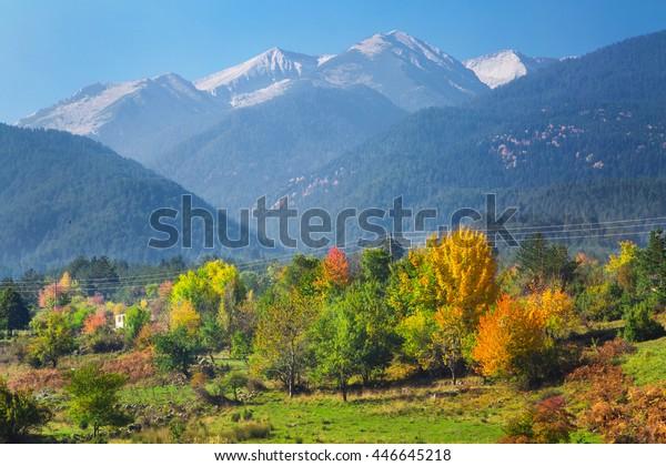 Mountain Autumn Landscape Wallpaper Colorful Forest Stock