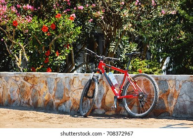Mountain bike on a sidewalk leaning against the stone wall of a garden full of plants in a sunny day