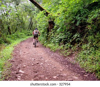 Mountain bike rider on steep forest trail