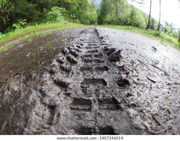 mountain-bike-tire-tracks-left-600w-1407