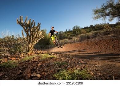 Mountain Biker on Desert Trail Next to Cactus