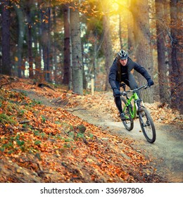 mountain biker riding in autumn forest