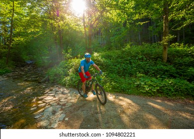 Mountain biker riding on bike in summer mountains forest landscape. Man cycling MTB flow trail track. Outdoor sport activity.