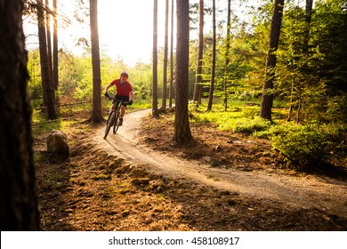 Mountain biker riding on bike in spring inspirational mountains landscape. Man cycling MTB on enduro trail track. Sport fitness motivation and inspiration outdoors in sunset woods.