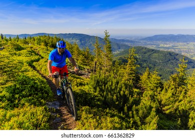 Mountain biker riding on bike in summer mountains forest landscape. Man cycling MTB outdoor sport activity.