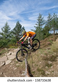 Mountain biker riding  a trail in a mountain bike park in South Wales, UK on a sunny day in the fall