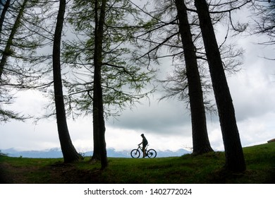 Mountain biker sitting on bicycle at edge of the mountain forest. Silhouette of a mountain biker. Bicyclist in the woods. Man on bike standing on mountain trail between forest trees. Sport and Outdoor