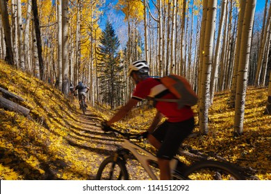 Mountain bikers enjoying beautiful autumn weather. A beautiful colorful scenic autumn landscape.