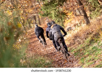 mountain bikers hiking on a forest path