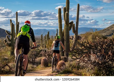 Mountain Bikers On Desert Trail In North Scottsdale, Arizona with cactus and mountains in background.