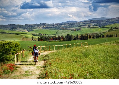 Mountain bikers on touristic trail in Tuscany (Italy)