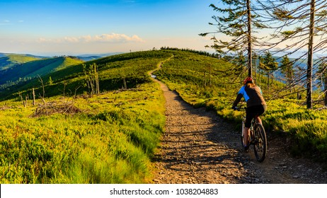 Mountain biking cycling at sunset in summer mountains forest landscape. Woman cycling MTB flow trail track. Outdoor sport activity.