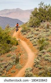 Mountain Biking on Desert Trail