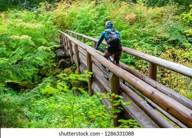 mountain biking on the McKenzie River Trail, Oregon