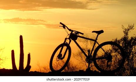 Mountain biking the southwest silhouette at sunset