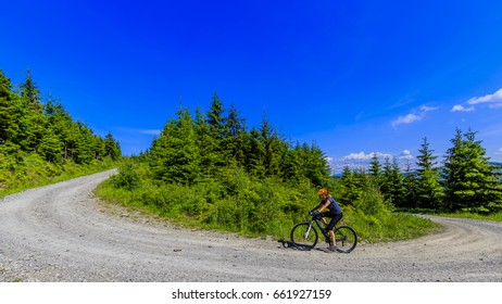 Mountain biking women riding on bike in summer mountains forest landscape. Woman cycling MTB outdoor sport activity.