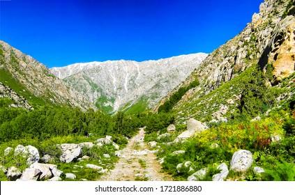 Mountain canyon trail view. Trail in mountains. Mountain trail landscape