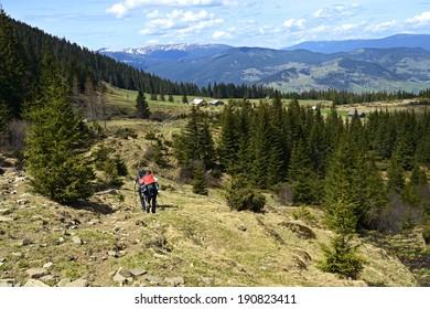 Mountain Carpathian landscape in spring with snowy peaks