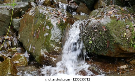 Mountain creek is full of streamy water.