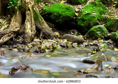Mountain creek with mossy stones