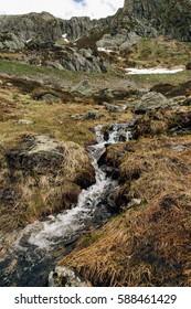 Mountain creek in Swiss Alps