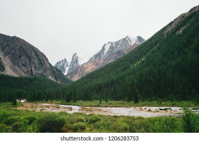 Mountain creek in valley against giant mountains and snowy tops. Water stream in brook against glacier. Rich vegetation and forest of highlands. Amazing atmospheric landscape of majestic nature.