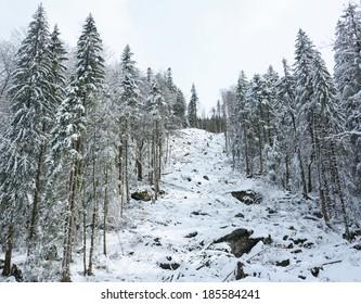 Mountain deforest
