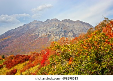 Mountain in the Fall